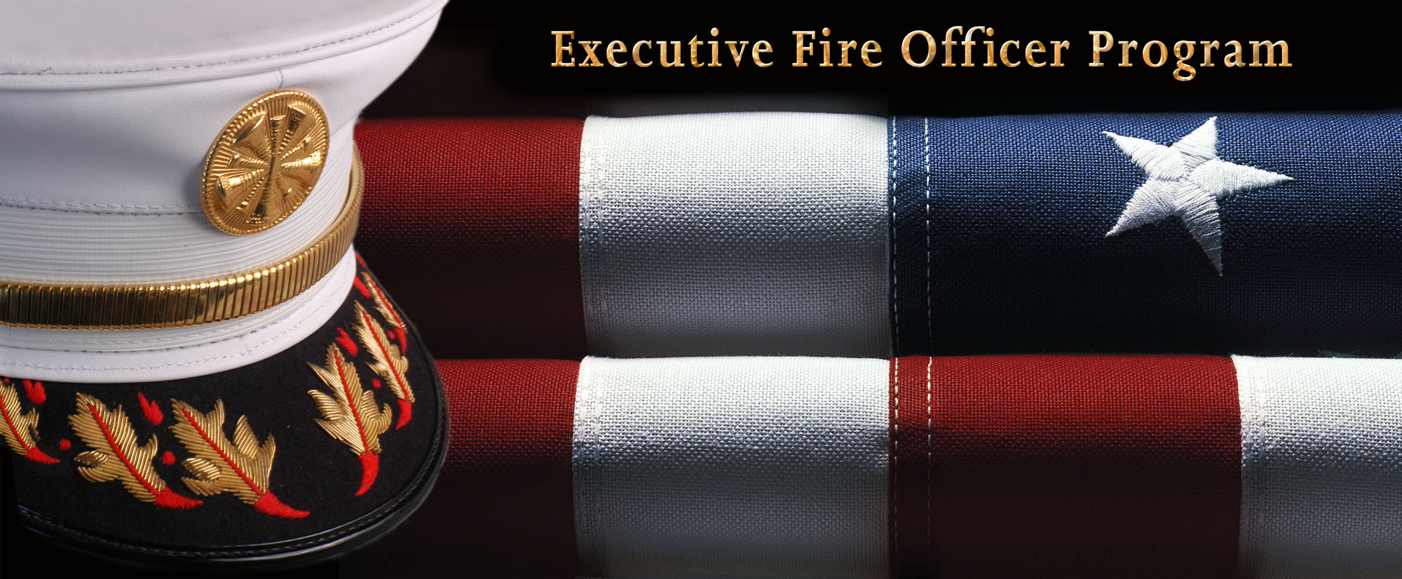 executive fire officer programme