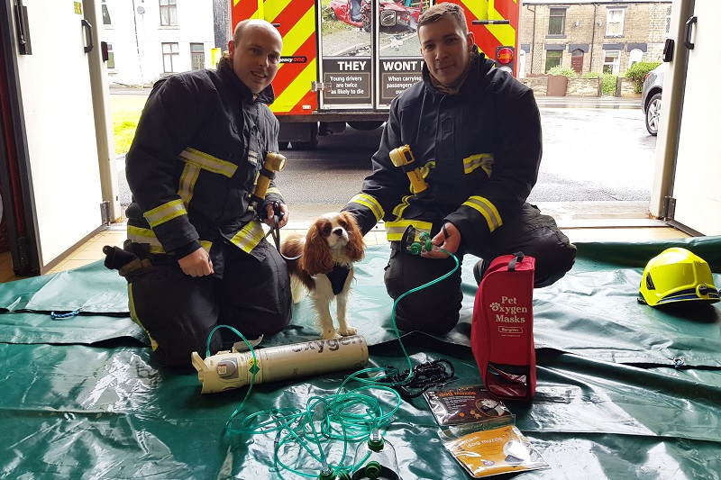 Firefighters praise new lifesaving equipment for pets
