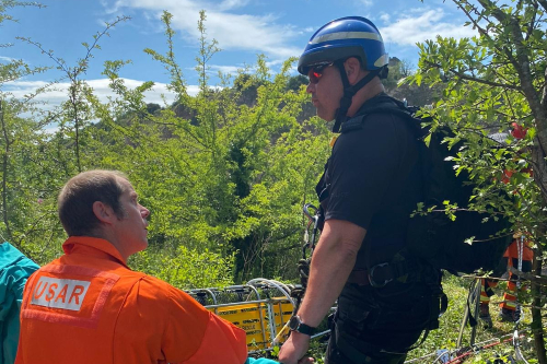 Oh deer! RSPCA, police and firefighters' rescue deer from quarry ledge